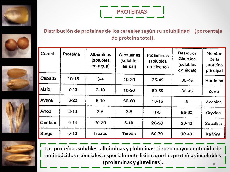 PROTEINAS Distribución de proteínas de los cereales según su solubilidad (porcentaje de proteína total).
