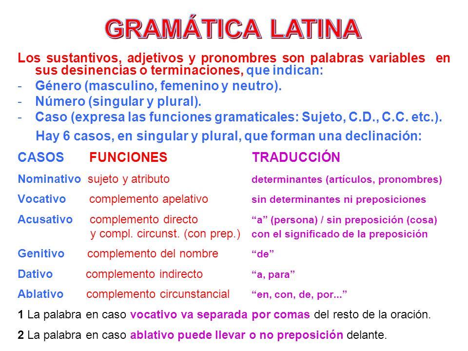 GRAMÁTICA LATINA Los sustantivos, adjetivos y pronombres son palabras variables en sus desinencias o terminaciones, que indican: