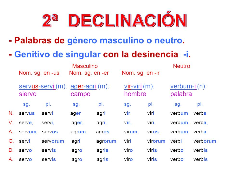 2ª DECLINACIÓN - Palabras de género masculino o neutro.