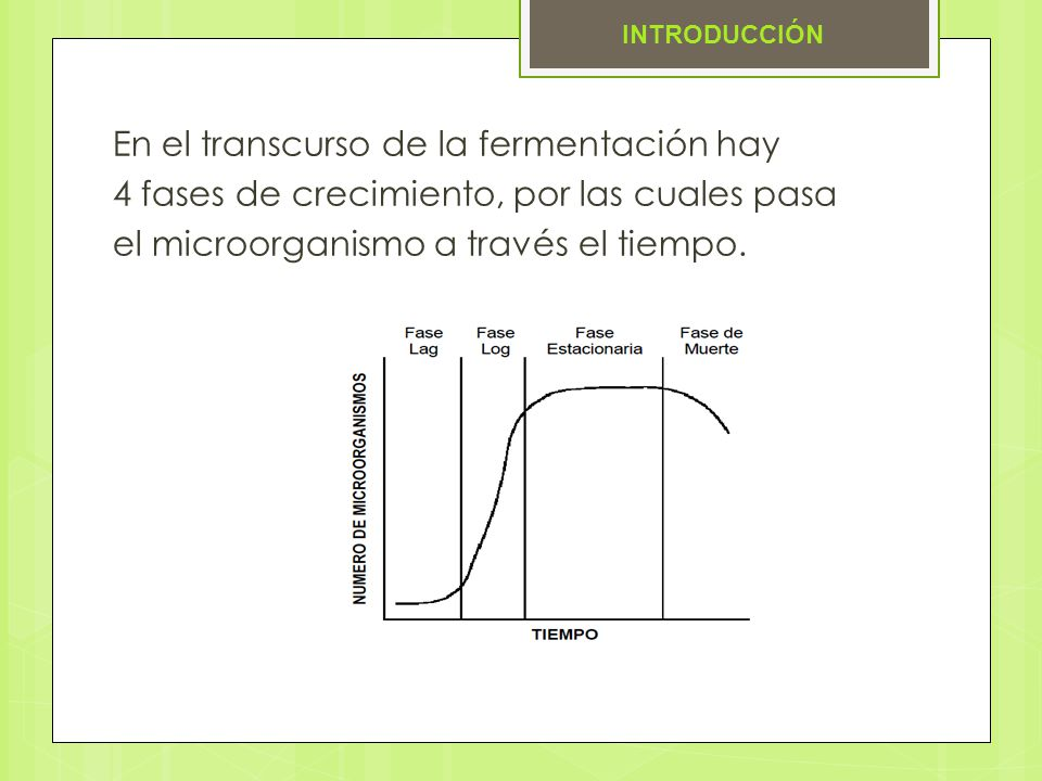 En el transcurso de la fermentación hay