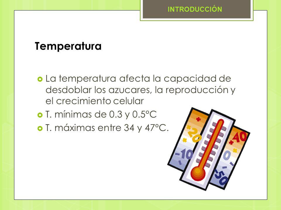 INTRODUCCIÓN Temperatura. La temperatura afecta la capacidad de desdoblar los azucares, la reproducción y el crecimiento celular.