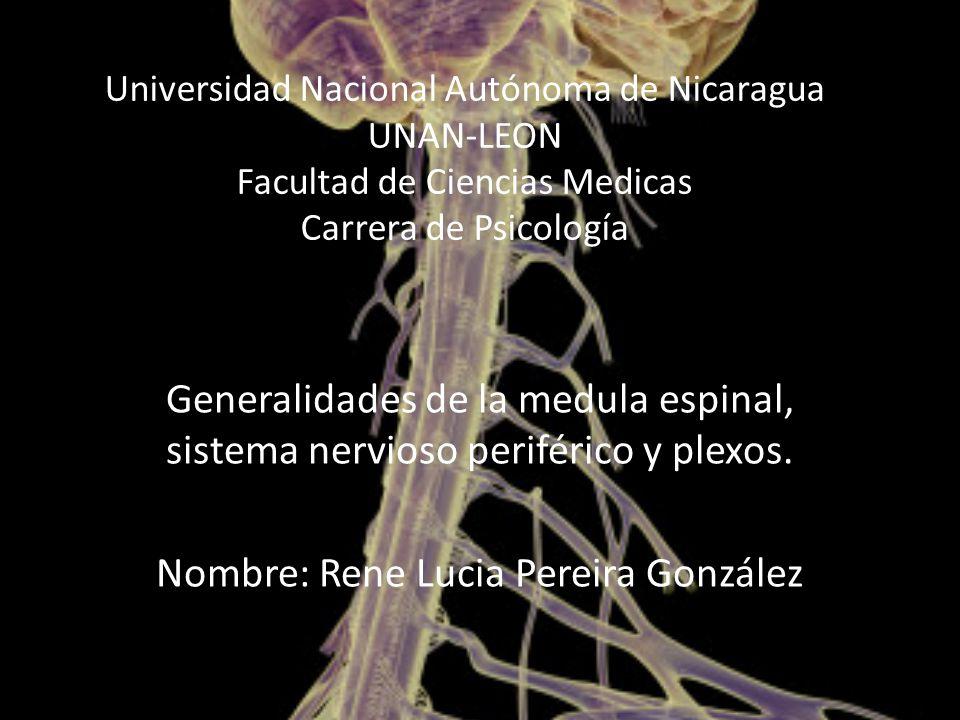 Nombre: Rene Lucia Pereira González