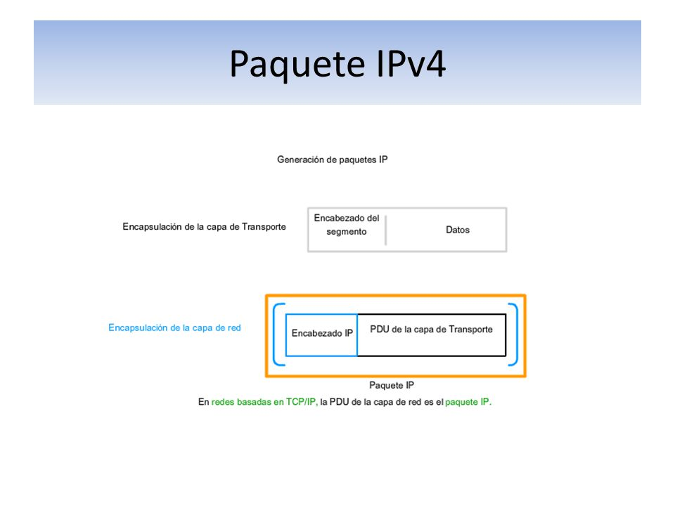 Paquete IPv4