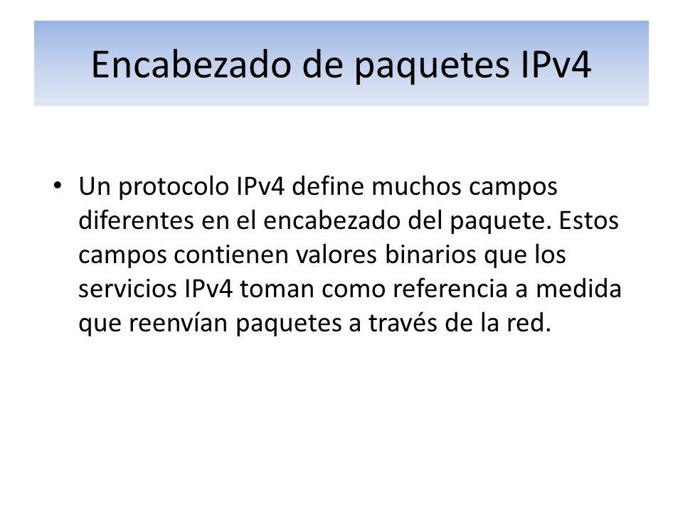 Encabezado de paquetes IPv4
