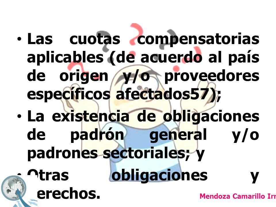 Otras obligaciones y derechos.