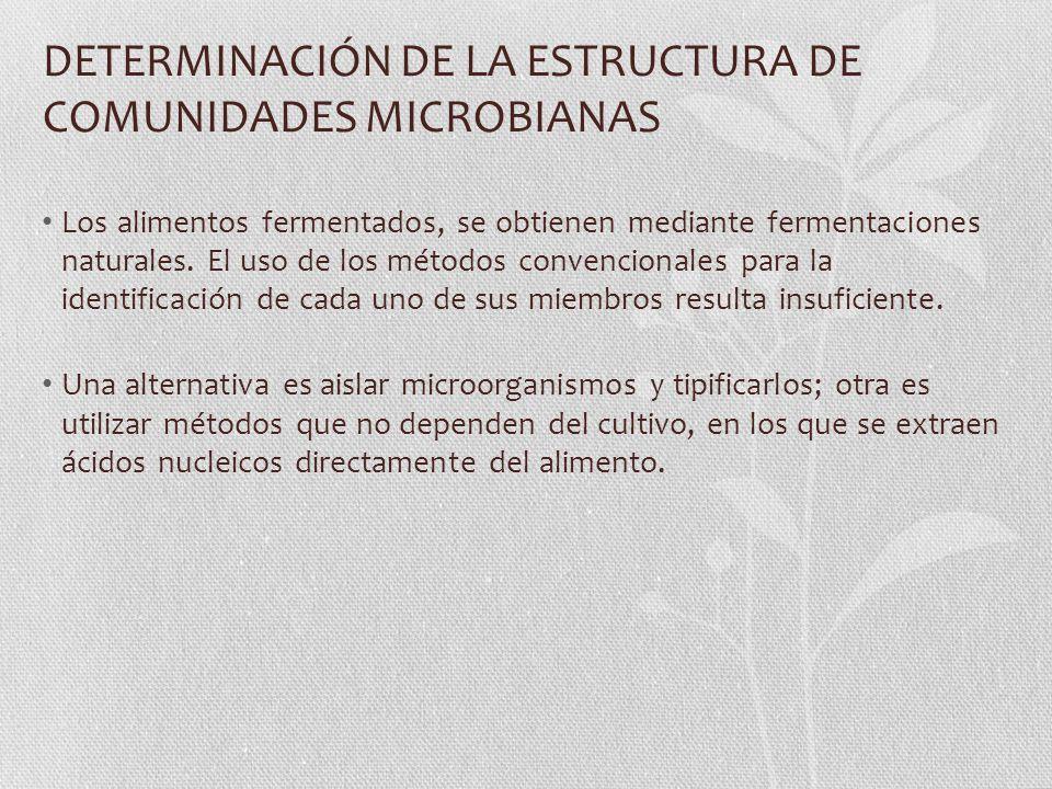 DETERMINACIÓN DE LA ESTRUCTURA DE COMUNIDADES MICROBIANAS