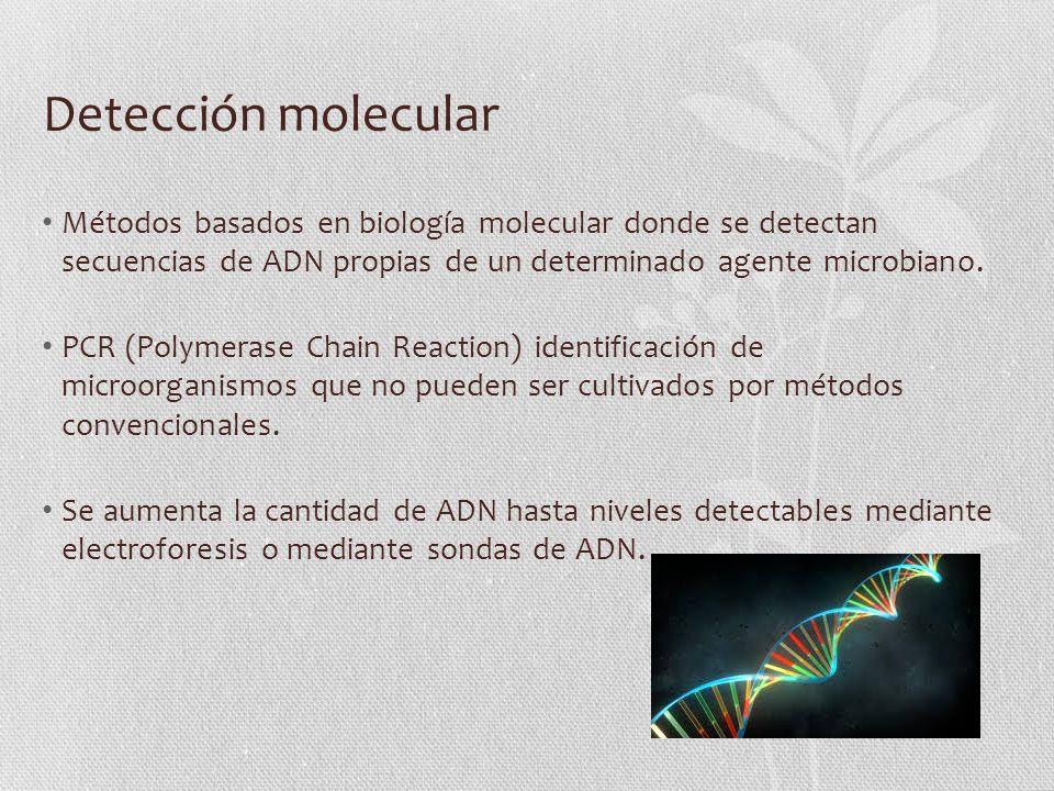 Detección molecular Métodos basados en biología molecular donde se detectan secuencias de ADN propias de un determinado agente microbiano.