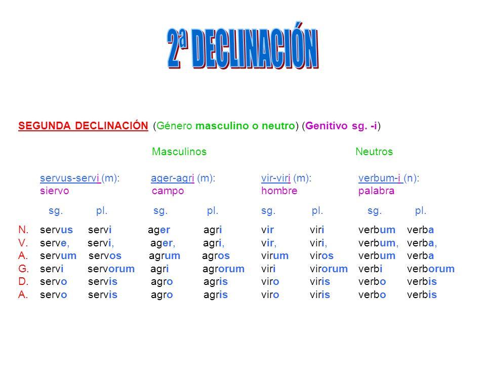 2ª DECLINACIÓN SEGUNDA DECLINACIÓN (Género masculino o neutro) (Genitivo sg. -i) Masculinos Neutros.