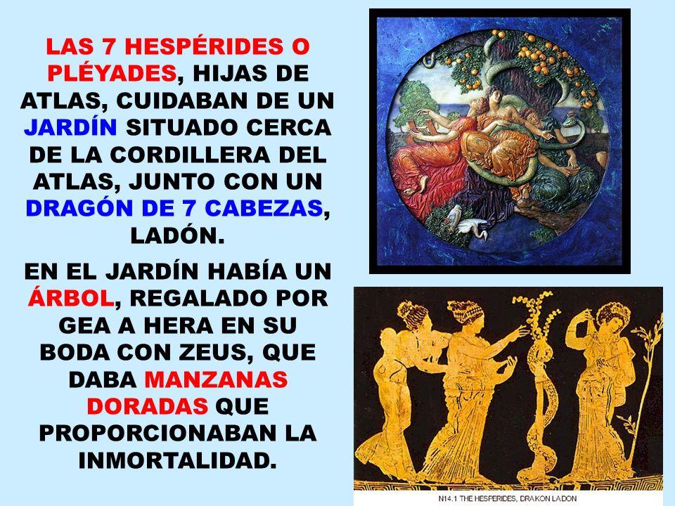 LAS 7 HESPÉRIDES O PLÉYADES, HIJAS DE ATLAS, CUIDABAN DE UN JARDÍN SITUADO CERCA DE LA CORDILLERA DEL ATLAS, JUNTO CON UN DRAGÓN DE 7 CABEZAS, LADÓN.