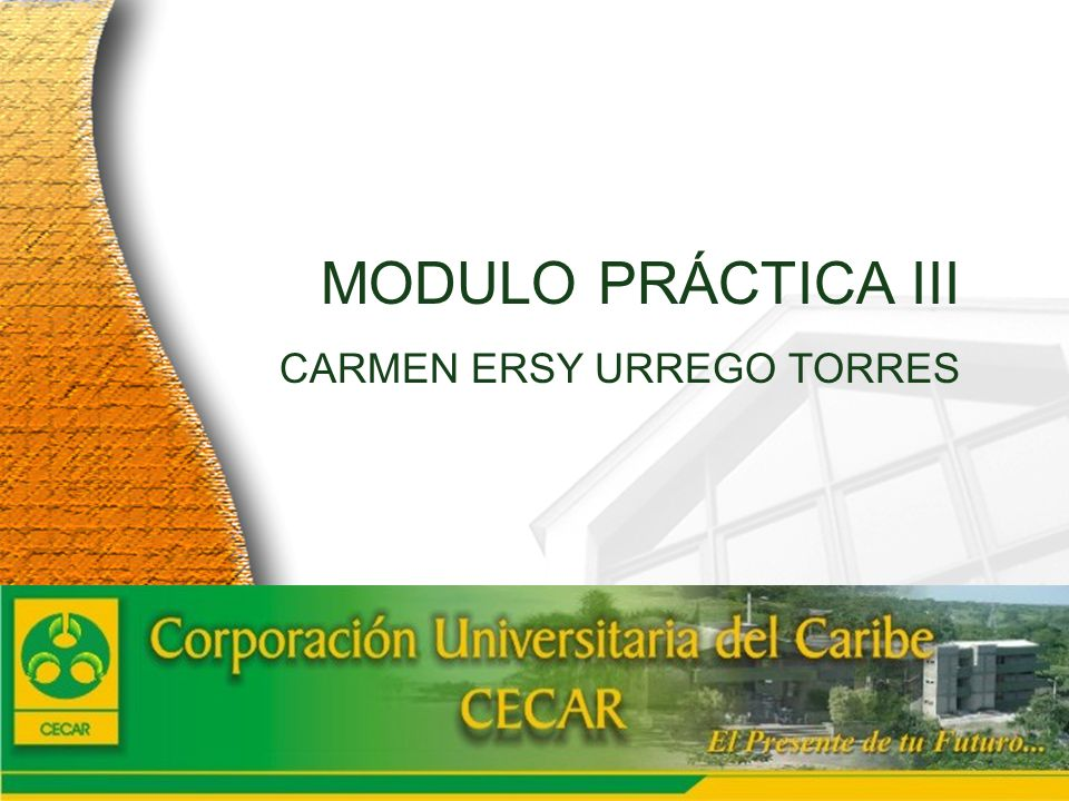2005 MODULO PRÁCTICA III CARMEN ERSY URREGO TORRES Cuenta Anual