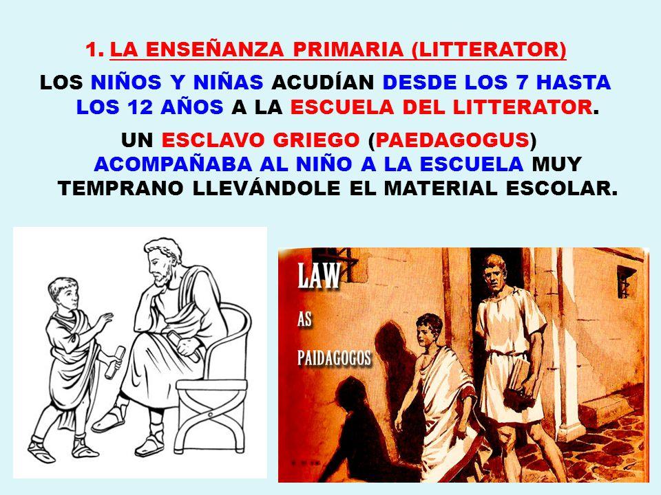 LA ENSEÑANZA PRIMARIA (LITTERATOR)
