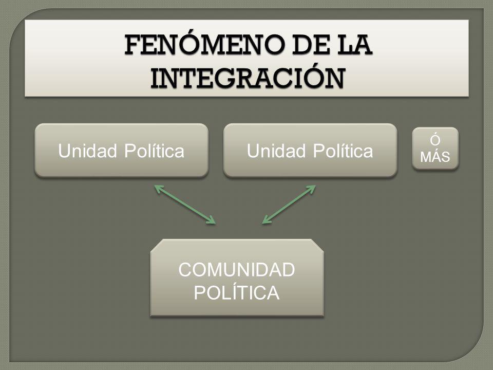 FENÓMENO DE LA INTEGRACIÓN