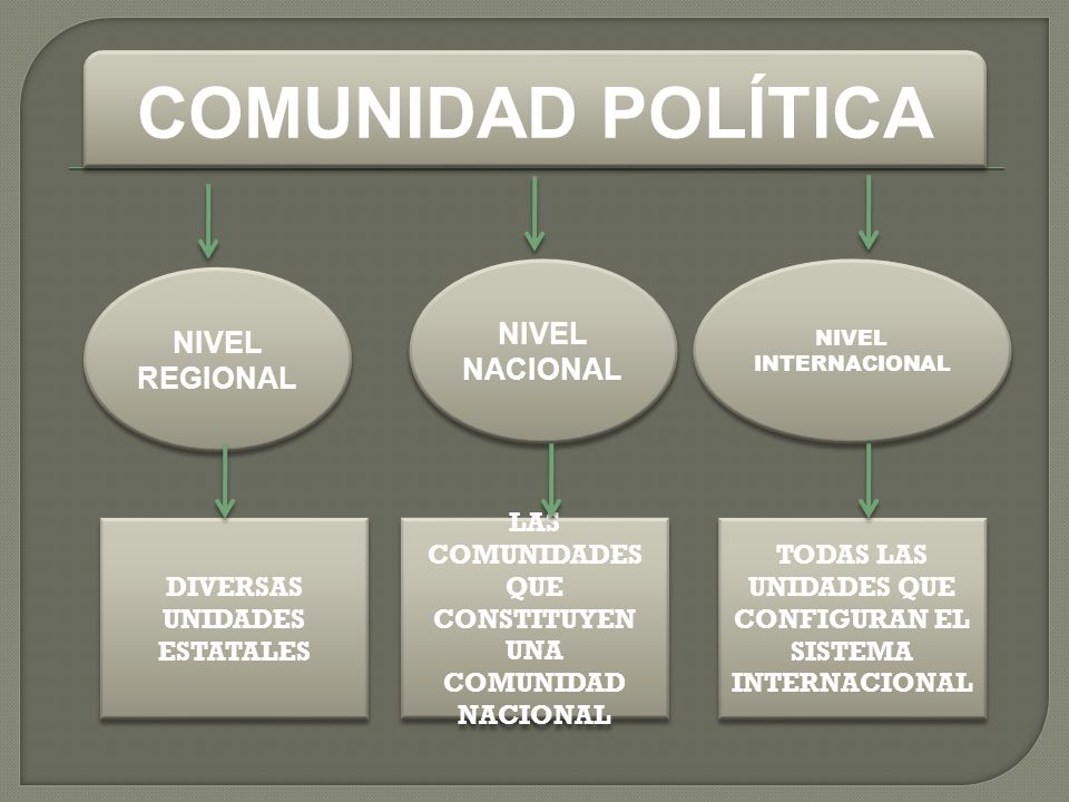 COMUNIDAD POLÍTICA NIVEL NACIONAL NIVEL REGIONAL