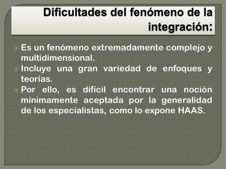 Dificultades del fenómeno de la integración: