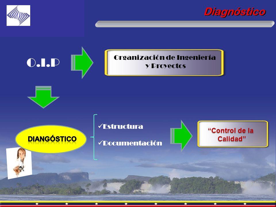 Organización de Ingeniería