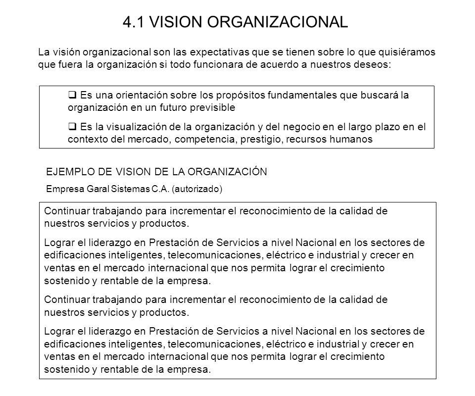 4.1 VISION ORGANIZACIONAL