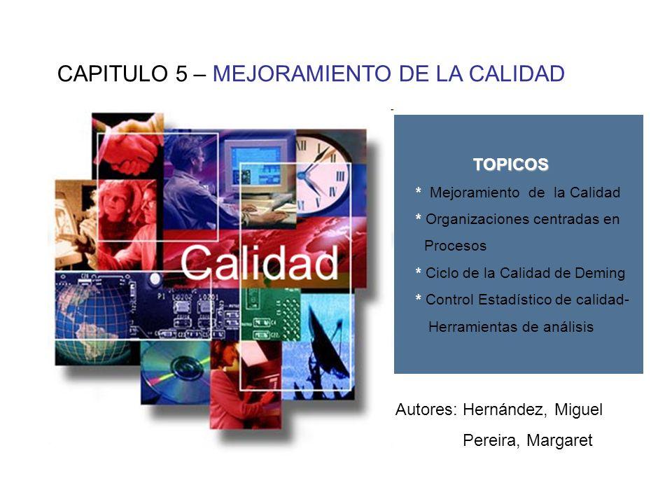CAPITULO 5 – MEJORAMIENTO DE LA CALIDAD