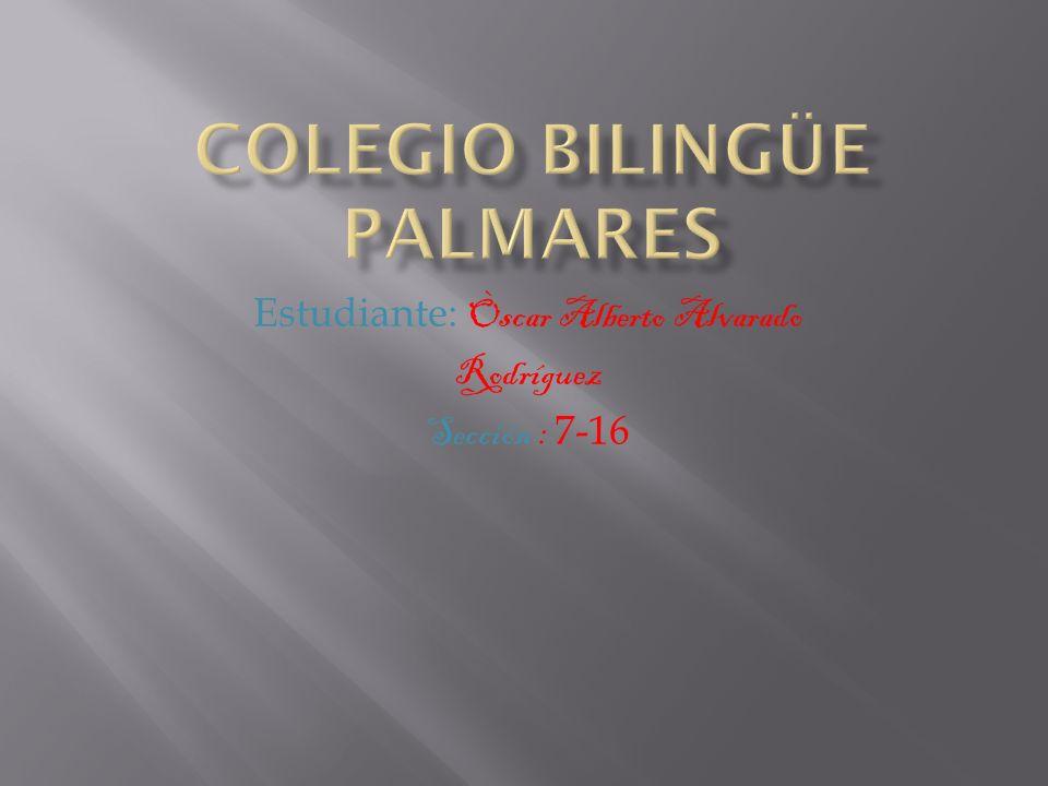Colegio bilingüe palmares