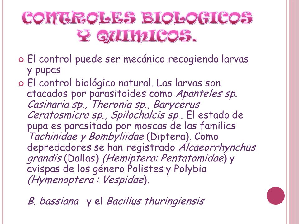 CONTROLES BIOLOGICOS Y QUIMICOS.