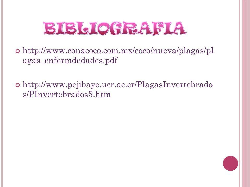 BIBLIOGRAFIA http://www.conacoco.com.mx/coco/nueva/plagas/pl agas_enfermdedades.pdf.