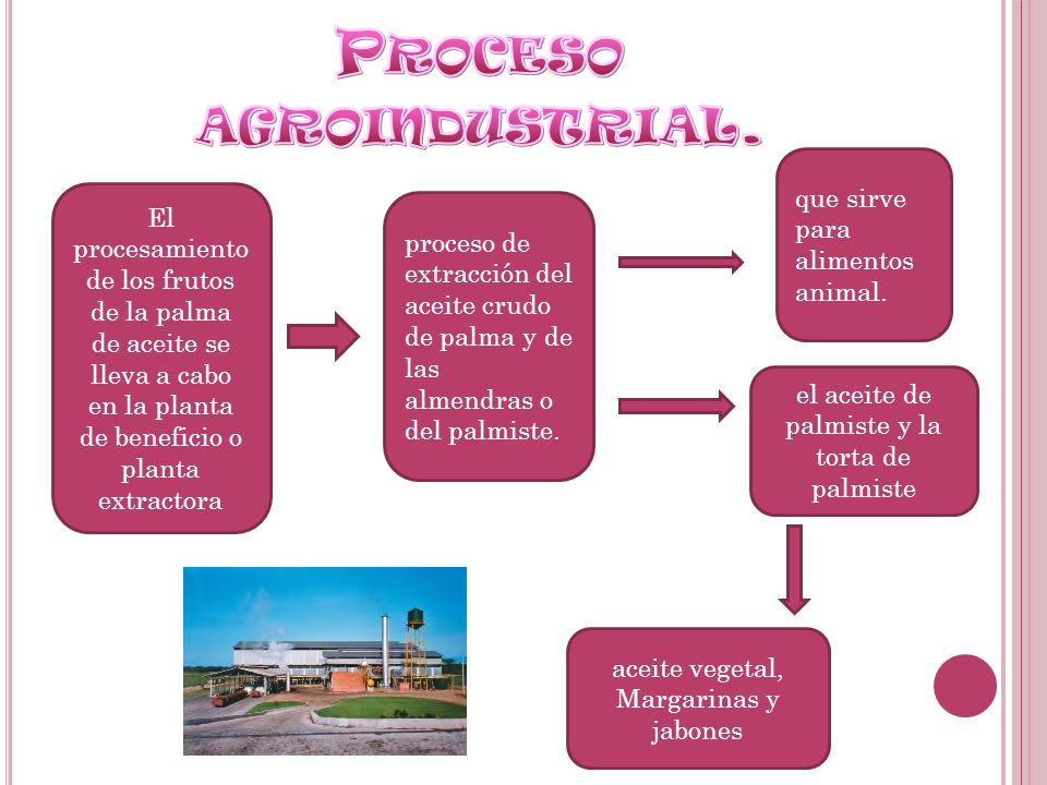 Proceso agroindustrial.