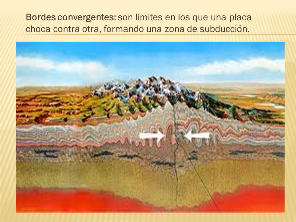 Bordes convergentes: son límites en los que una placa choca contra otra, formando una zona de subducción.