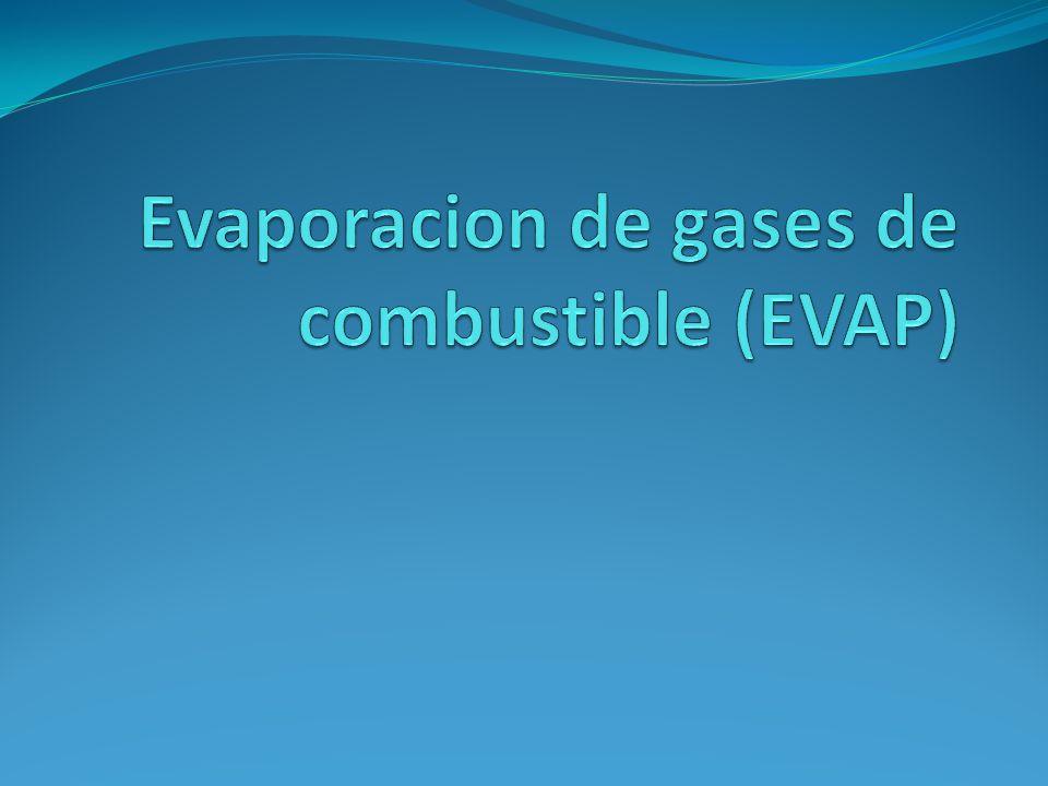 Evaporacion de gases de combustible (EVAP)