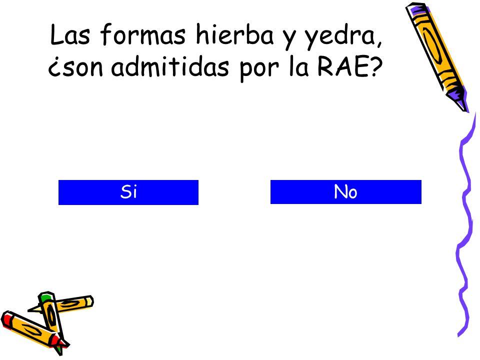 Las formas hierba y yedra, ¿son admitidas por la RAE