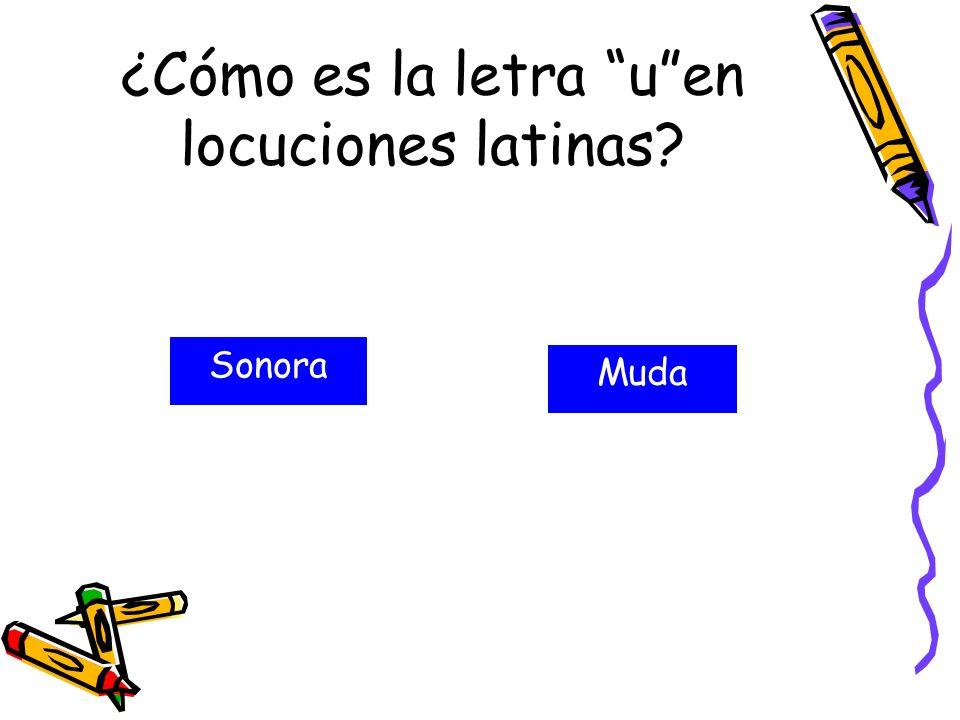 ¿Cómo es la letra u en locuciones latinas
