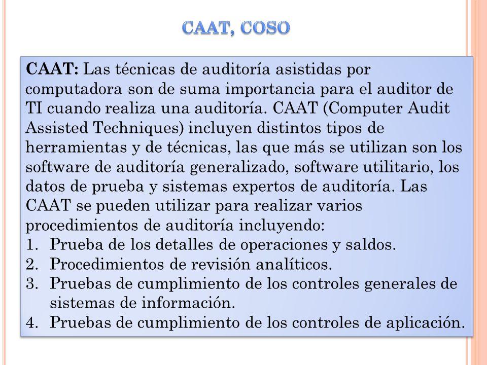 CAAT, COSO