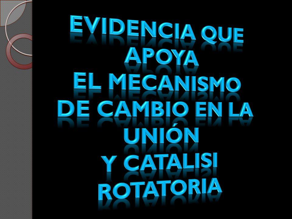 Evidencia que apoya el mecanismo De cambio en la unión Y CATALISI ROTATORIA
