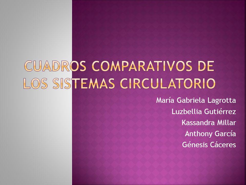 CUADROS COMPARATIVOS DE LOS SISTEMAS CIRCULATORIO
