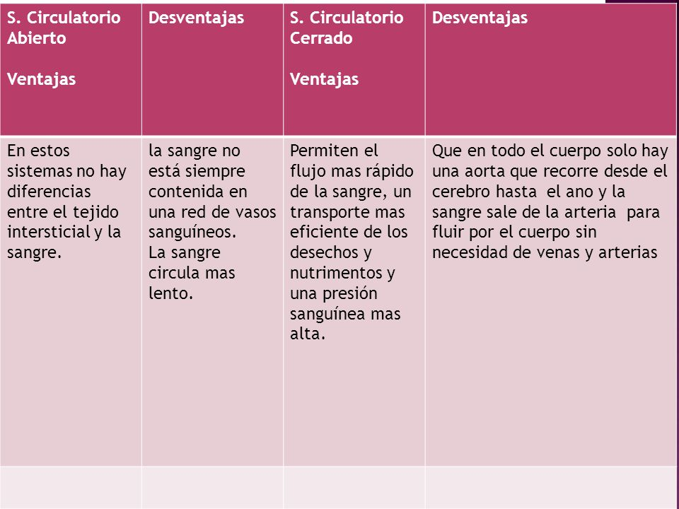 S. Circulatorio Abierto