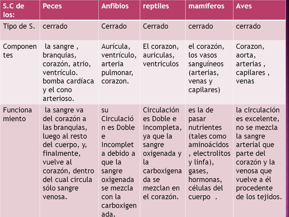 S.C de los: Peces. Anfibios. reptiles. mamíferos. Aves. Tipo de S. cerrado. Cerrado Componentes.