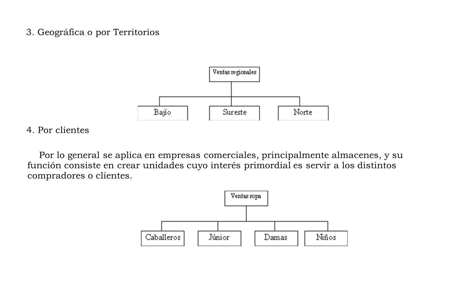 3. Geográfica o por Territorios