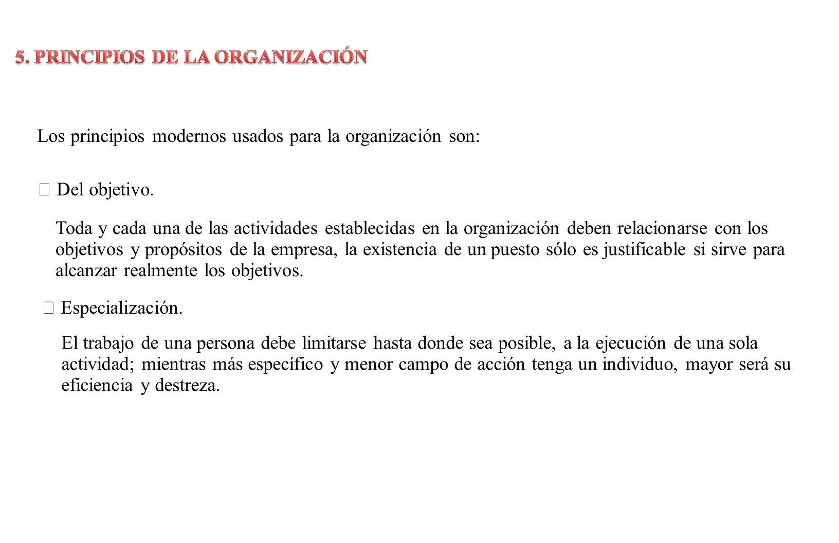 5. PRINCIPIOS DE LA ORGANIZACIÓN