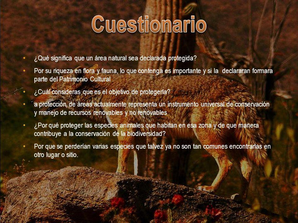 Cuestionario ¿Qué significa que un área natural sea declarada protegida