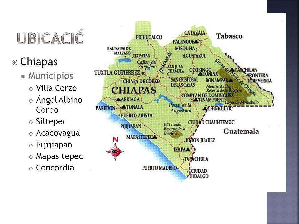 Ubicación Chiapas Municipios Villa Corzo Ángel Albino Coreo Siltepec
