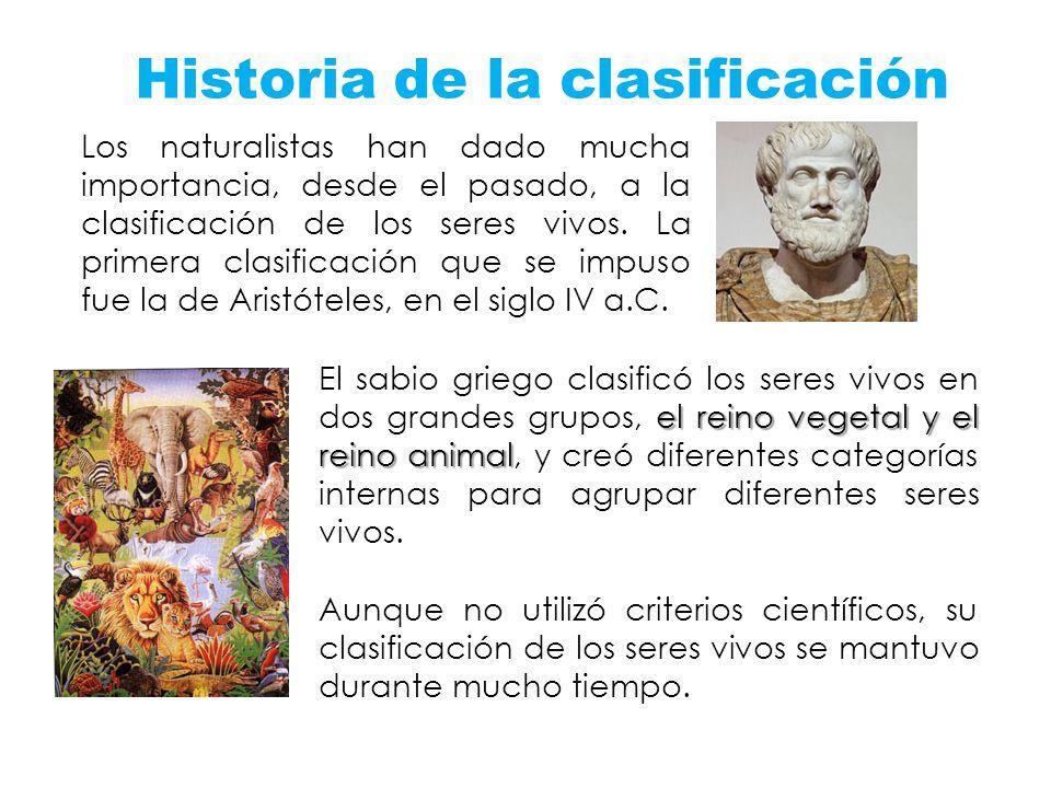 Historia de la clasificación