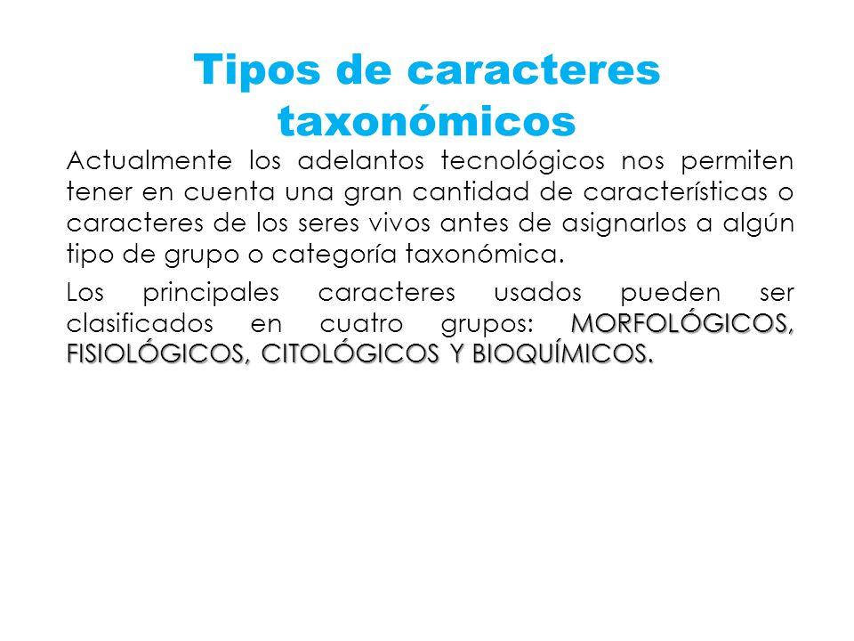 Tipos de caracteres taxonómicos