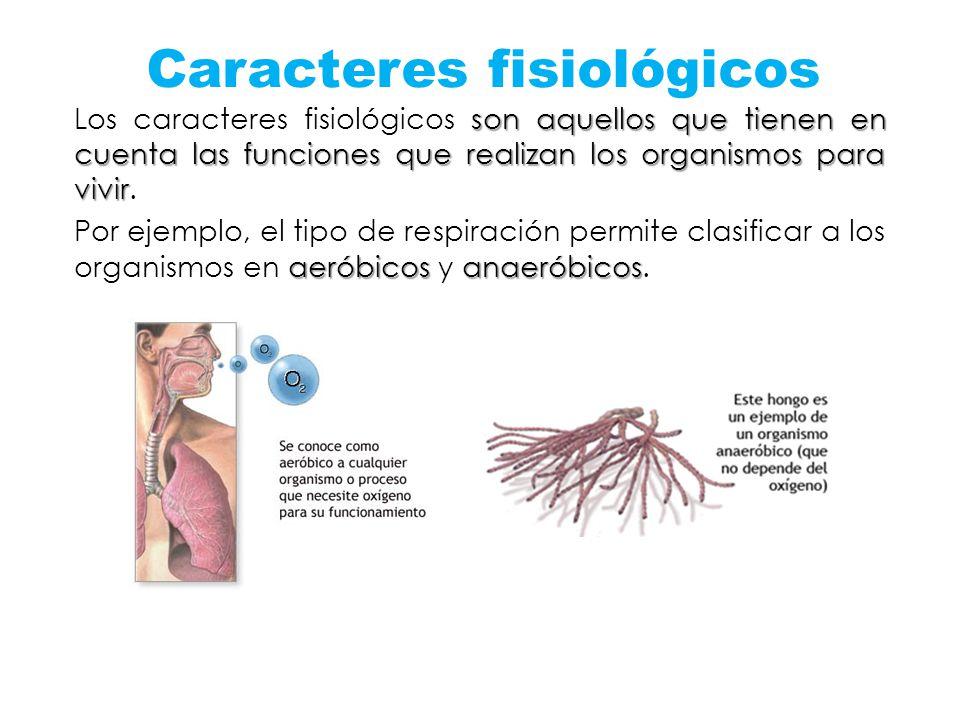 Caracteres fisiológicos