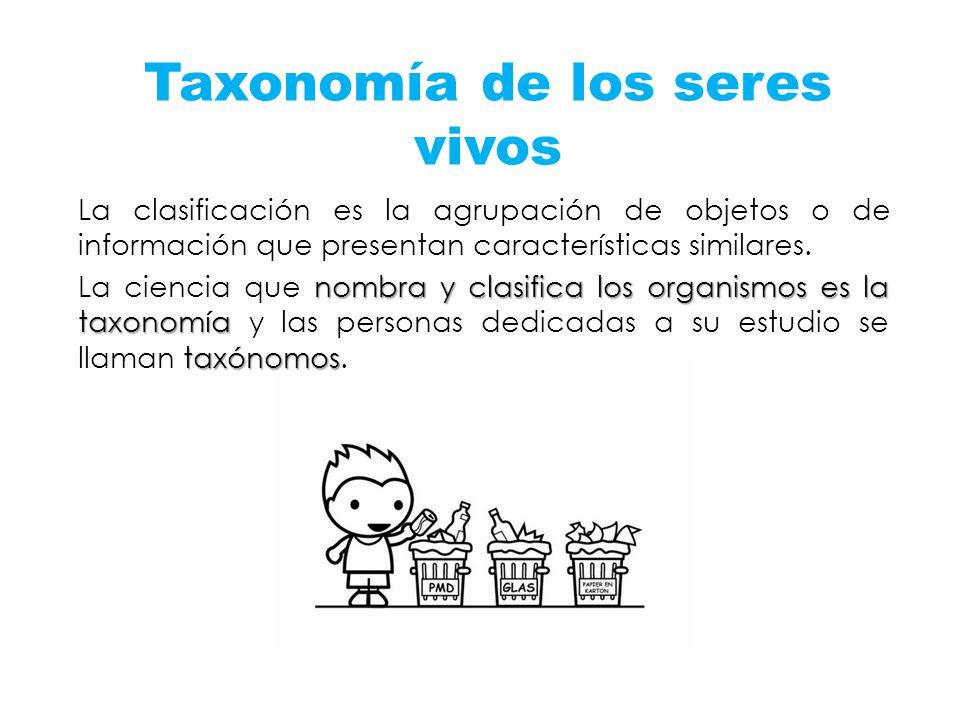 Taxonomía de los seres vivos