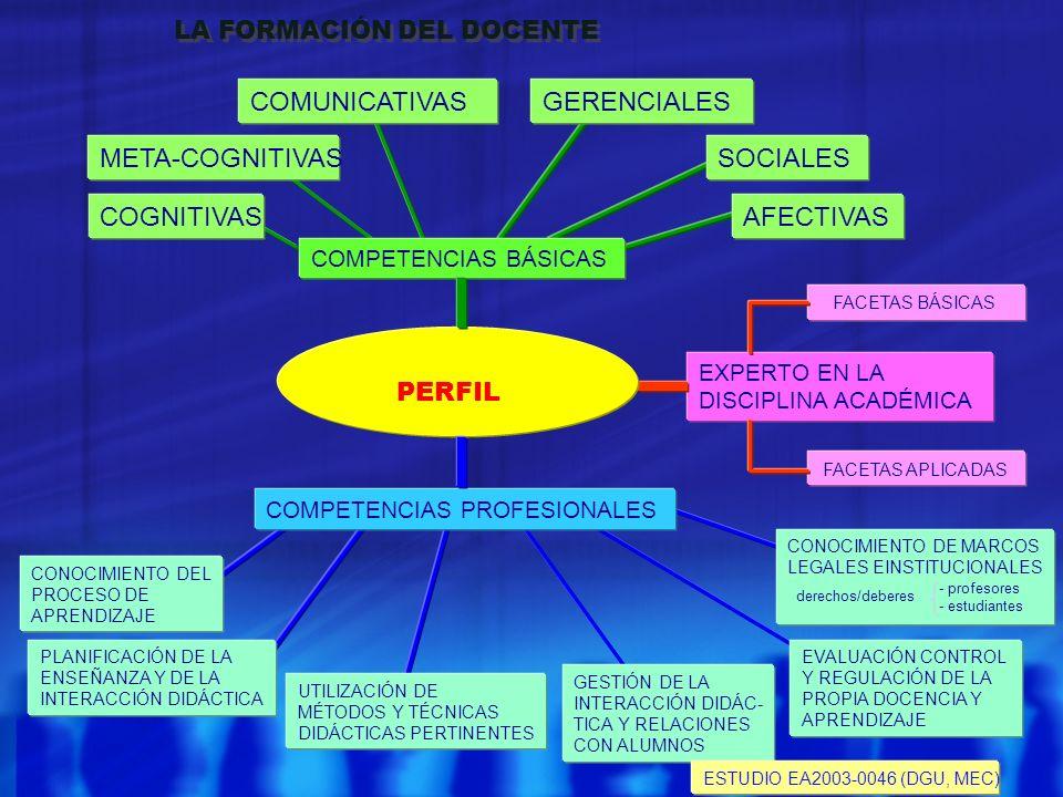 COMUNICATIVAS GERENCIALES META-COGNITIVAS SOCIALES COGNITIVAS