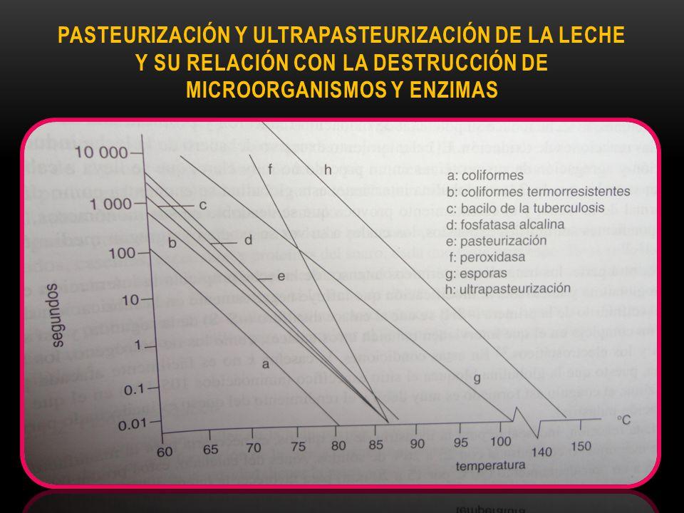 Pasteurización y ultrapasteurización de la leche y su relación con la destrucción de microorganismos y enzimas
