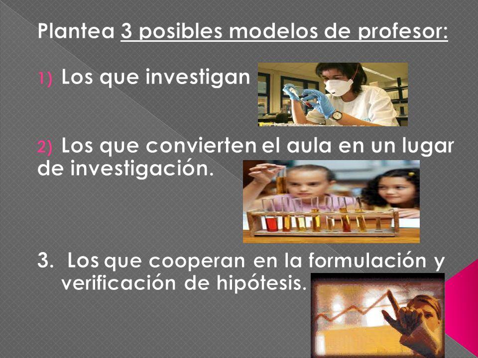 Plantea 3 posibles modelos de profesor: