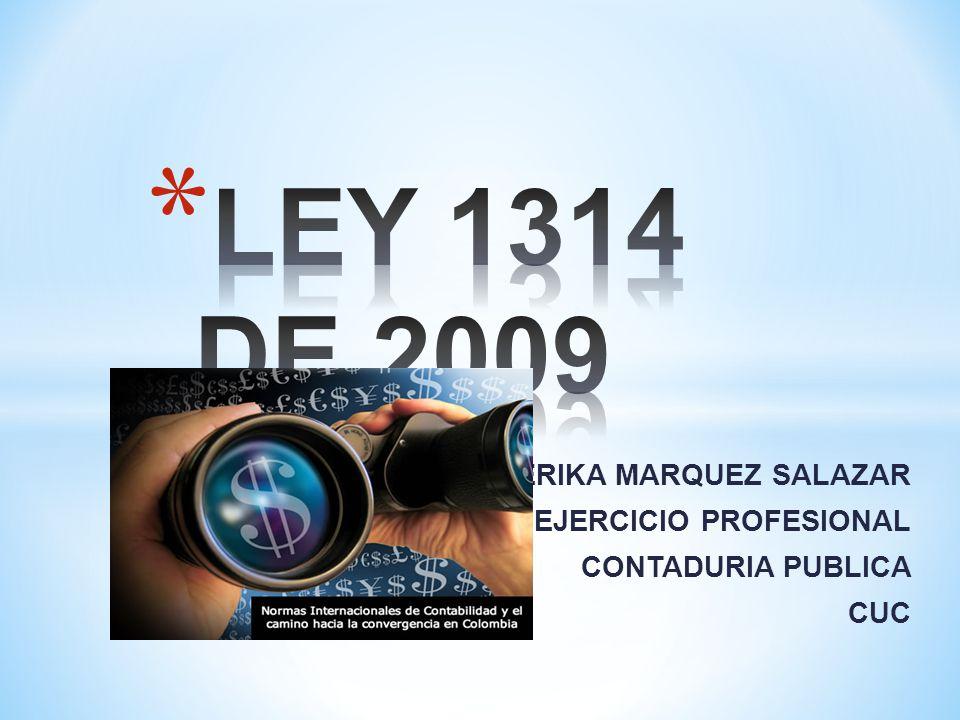 LEY 1314 DE 2009 ERIKA MARQUEZ SALAZAR