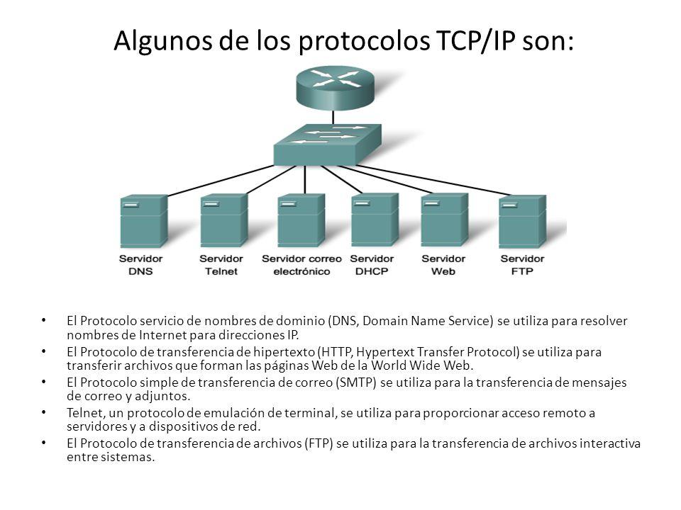 Algunos de los protocolos TCP/IP son: