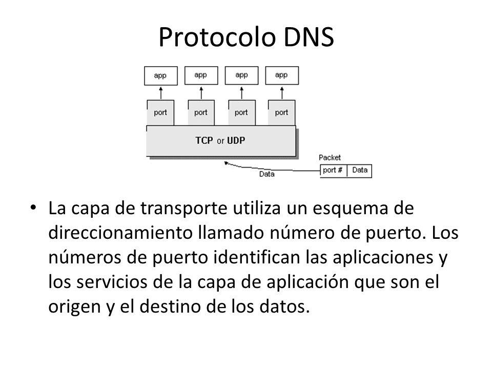 Protocolo DNS