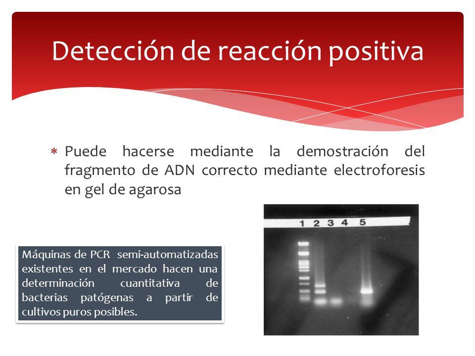 Detección de reacción positiva