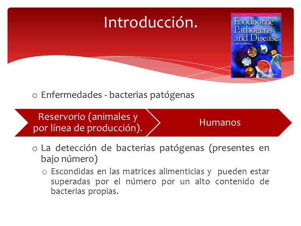 Reservorio (animales y por línea de producción).